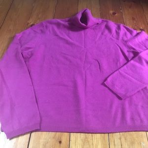 Cashmere Turtle 🐢 Neck Sweater